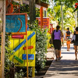 things to do in placencia