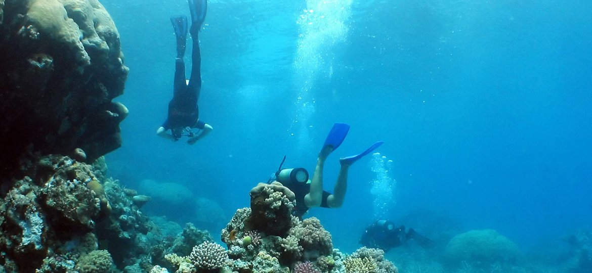 Belize Glover's Reef Diving Tours
