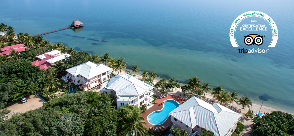 award winning placencia belize resort